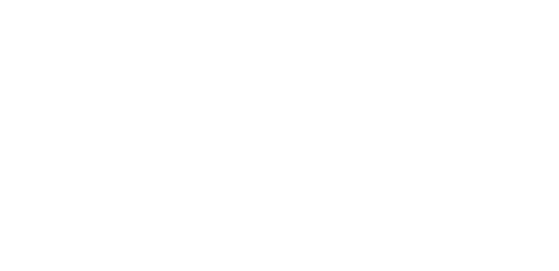 Siriusware logo knockout